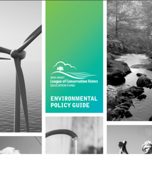 Green in 17 Environmental Policy Guide